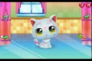 Sevimli Kediye bakım yap